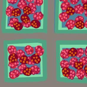 summer raspberry  mix on cloud gray