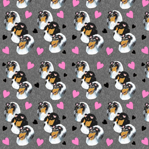 Collies with Hearts