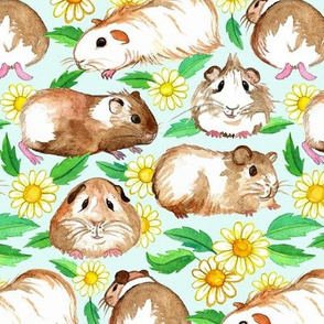 Guinea Pigs and Daisies in Watercolor on Pale Mint