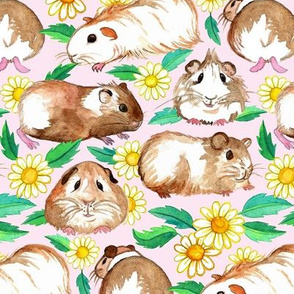 Guinea Pigs and Daisies in Watercolor on Light Pink