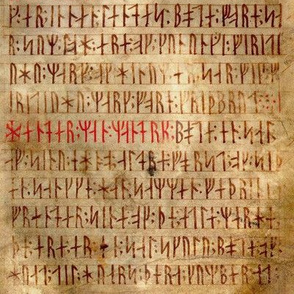 Codex Runicus Orginal