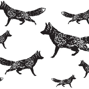 Trotting Foxes in Black