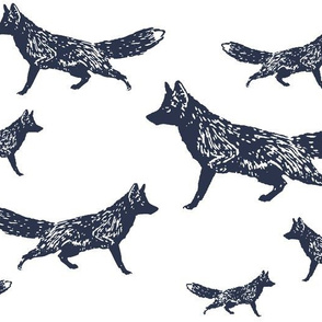 Trotting Foxes in Navy