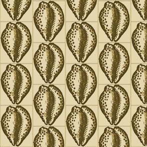 Cowrie, bronze
