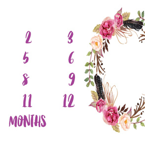 Pretty in Pink Baby Milestone
