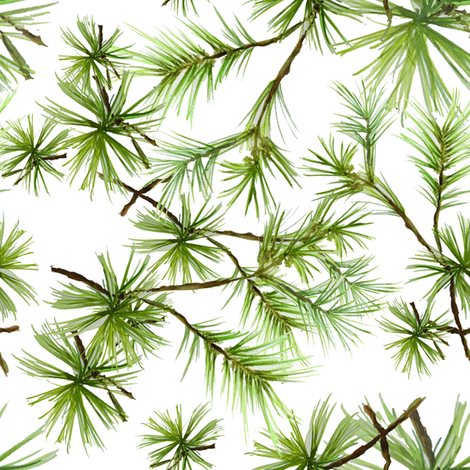 evergreen fabric by sherrys on Spoonflower - custom fabric