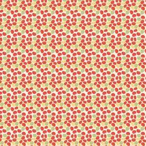 tomates_XS