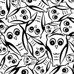 Night Owl - White and Black
