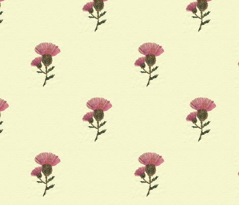 English Thistle fabric by pndesigns2 on Spoonflower - custom fabric