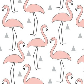 Soft Pink Flamingos on White