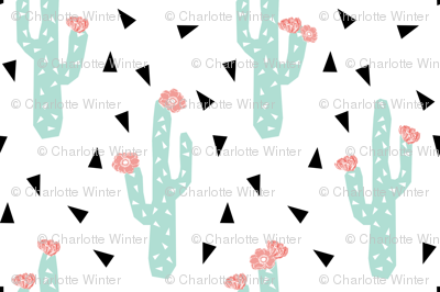 cactus flowers cute girly cactus with peach pink flowers