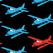 Red Sea Plane