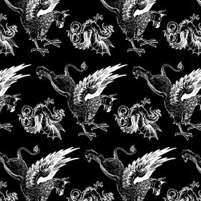 griffin and dragon b/w - var. 2 - potter's world