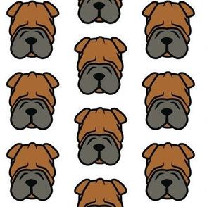 Shar Pei - wrinkly face dog love