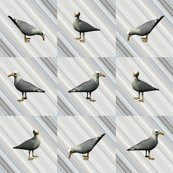 Rseagull_gray_fabric_shop_thumb