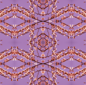 Pink_Blossom_Purple_Sky_Pattern