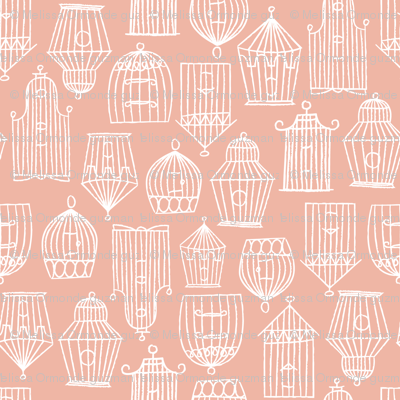 Bird Cages- Pink