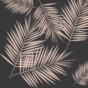 Palm leaves - Palm tree tropical fern leaves blush on graphite || by sunny afternoon