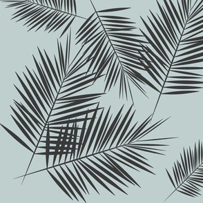 palm leaves - tropical palm fern summer graphite on sea foam pale blue || by sunny afternoon