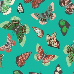 eva_butterfly