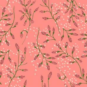oceana_kelp_pink