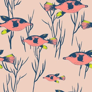 oceana_pufferfish_pink