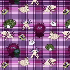 The Underwater Unexpected in purple plaid