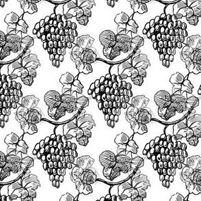 vintage grapes - toile