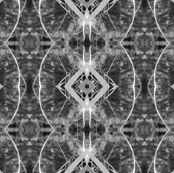 BnW_Leaf_Pattern