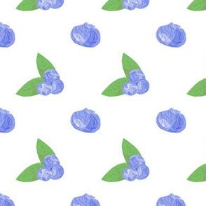 Flight of the Blueberries