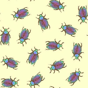 iridescent summer beetles