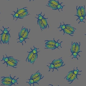 iridescent beetles on grey