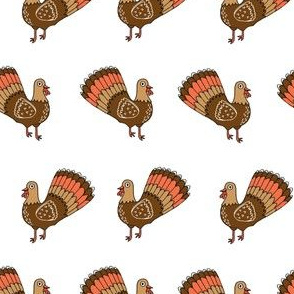 thanksgiving turkeys // turkey trot bird cute birds autumn fall