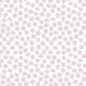 Gerberas in Old Rose - Macro Florals in Light Rose