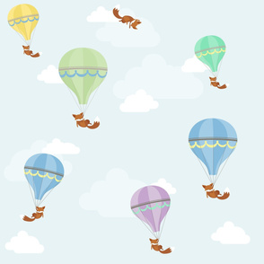 Fox Air Balloons