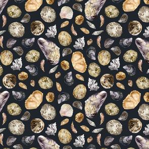 Dark seashells