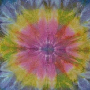 dyed005