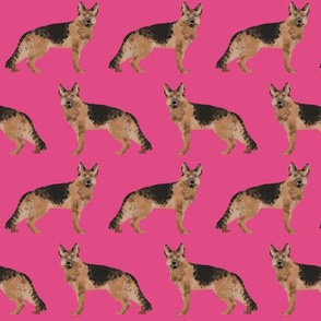 german shepherd dog pink cute pet dog fabric dogs sweet dogs pets