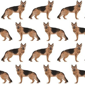 german shepherd dog white fabric cute dog dogs pet dog fabric german shepherd dog