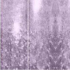 MSD Lavender