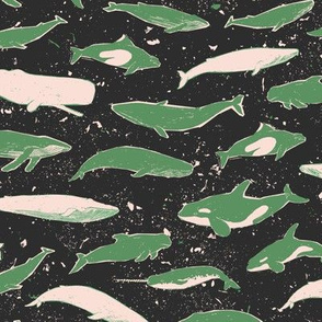 Whales in the Ocean [green]