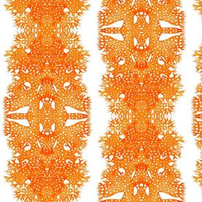 BROWN HELLENIC SEAWEEDS