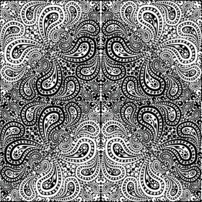 Black and White Paisley Counterchange Chevron