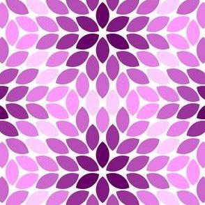 05621346 : R6R lens 4 : magenta purple