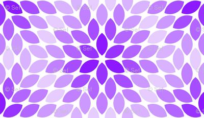 05621357 : R6R lens 4 : violet