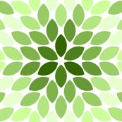 R6R lens 4 : limestone green