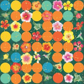 hibiscus lanai