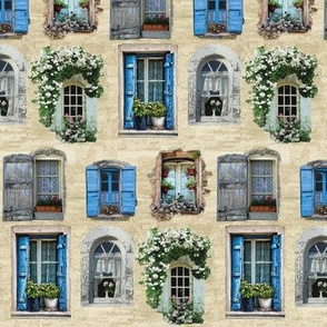 Windows and Windowboxes