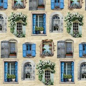 Windows and Windowboxes