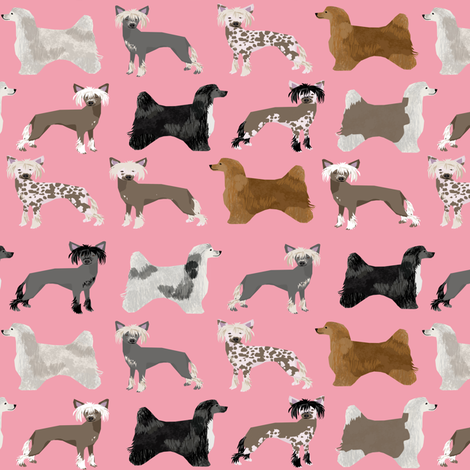 chinese crested dogs hairless dog powderpuff cute dog pets pet design fabric for dog lovers fabric by petfriendly on Spoonflower - custom fabric